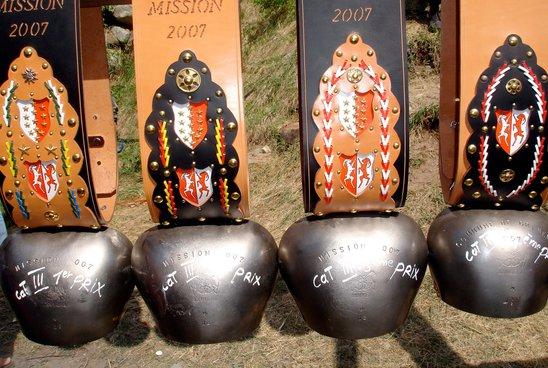 Combat de reines 2007 - Mission
