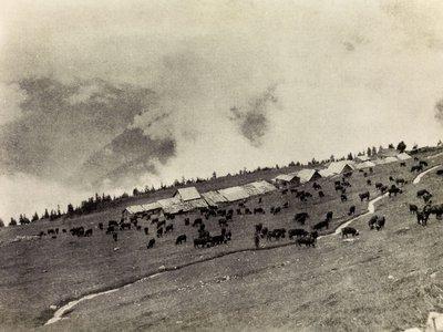 Alpage de Thyon
